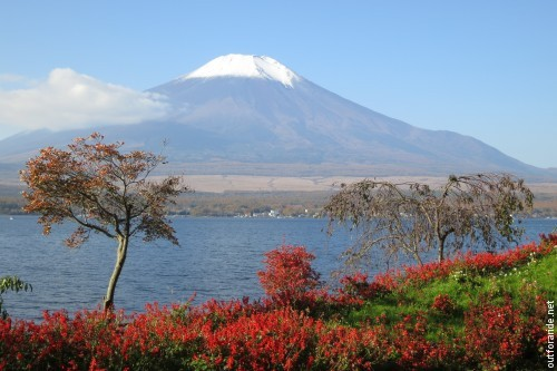 Mt Fuji from lake Yamanaka.