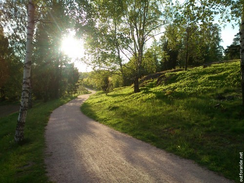 If you need any more arguments why running errands by bike is bliss: it's moments like this, when a 9 pm sunset combined with the fresh green of early spring create an almost magical atmosphere (taken in the Viikki nature area, Helsinki).